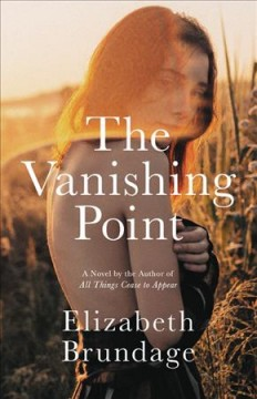 The vanishing point : a novel
