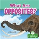 What Are Opposites?
