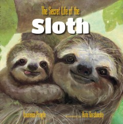 The secret life of the sloth