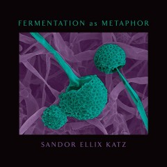 Fermentation as Metaphor