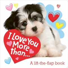 I Love You More Than...: A Lift-The-Flap Book
