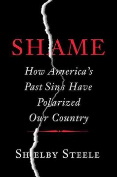 Shame : how America