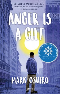 Anger is a gift : a novel