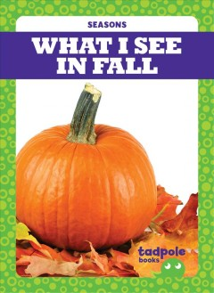 What I see in fall