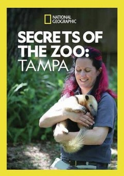 Secrets of the zoo.