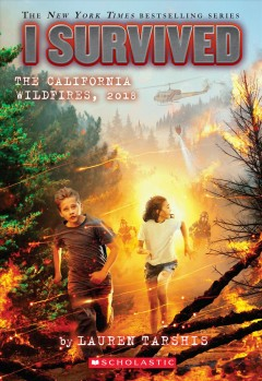 The California wildfires, 2018