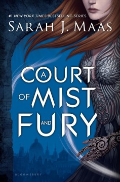 A Court of Mist and Fury (#2 in series) by Sarah J. Maas