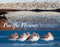 The Pacific flyway