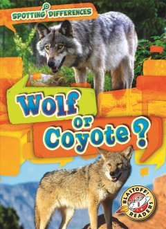 Wolf or coyote?