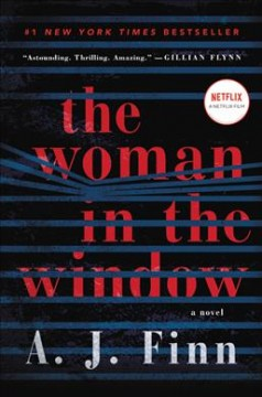 The woman in the window : a novel book cover