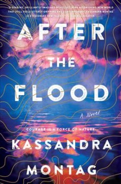 After the flood : a novel book cover