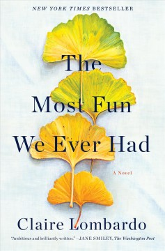 The most fun we ever had : a novel book cover