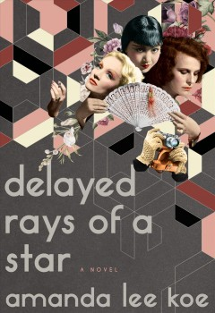 Delayed rays of a star : a novel book cover