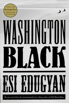 Washington Black : a novel book cover
