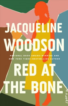 Red at the Bone : A Novel. book cover