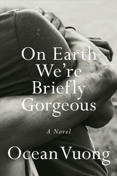 On earth we're briefly gorgeous : a novel book cover