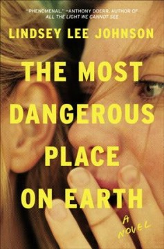 The most dangerous place on earth : a novel book cover
