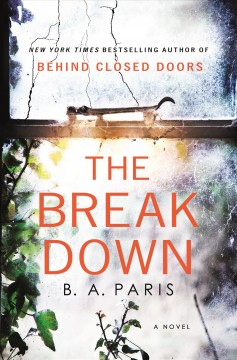 The breakdown book cover