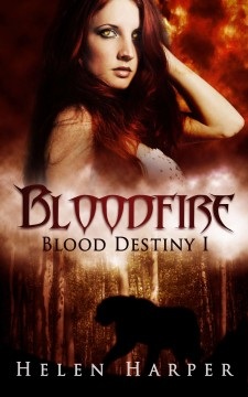 Bloodfire book cover