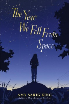 The year we fell from space book cover