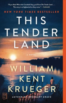 This tender land : a novel book cover