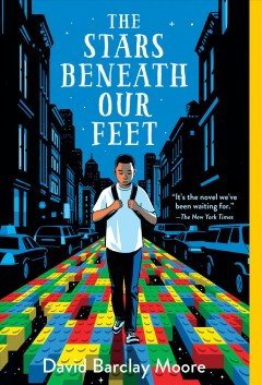 The stars beneath our feet book cover