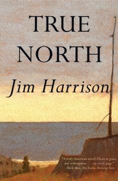 True north : a novel book cover