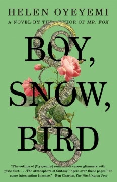 Boy, snow, bird book cover
