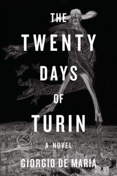 The twenty days of Turin book cover