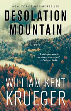 Desolation mountain : a novel