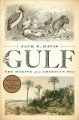 The Gulf : the making of an American sea