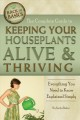 The complete guide to keeping your houseplants alive & thriving everything you need to know explained simply