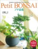 Petit Bonsai : create a landscape in a little pot