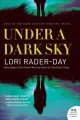 Under a dark sky : a novel Book Cover