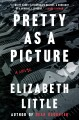 Pretty as a picture : a novel Book Cover