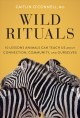 Wild rituals : 10 lessons animals can teach us about connection, community, and ourselves Book Cover