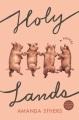 Holy lands : a novel Book Cover