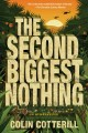 The second biggest nothing Book Cover