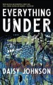Everything under [sound recording] : a novel Book Cover