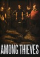 Among thieves [DVD videorecording] Book Cover