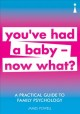 You've had a baby now what? : a practical guide to family psychology / James Powell. cover