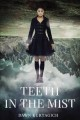 Teeth in the mist / Dawn Kurtagich. cover
