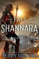The Stiehl Assassin / Terry Brooks. cover