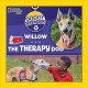 Willow the therapy dog / by Lisa M. Gerry ; photographs by Lori Epstein. cover