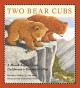Two bear cubs : a Miwok legend from California's Yosemite Valley / retold by Robert D. San Souci ; illustrated by Daniel San Souci. cover