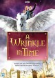 Cover for A wrinkle in time (2004)
