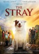 Cover for The stray