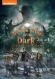 Cover for Are You Afraid of the Dark? Curse of the Shadows