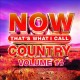 Cover for Now That's What I Call Country Volume 14