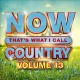 Cover for NOW that's what I call country. Volume 13.